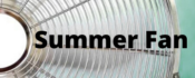VAC Summer Fan Program button